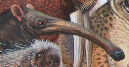 Menagerie – Anteater Detail