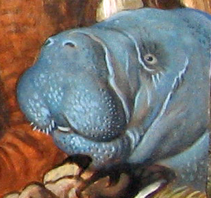 Menagerie – Manatee Detail